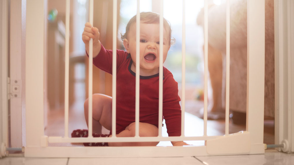 Baby at safety gate